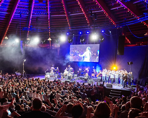 Alfons Hasenknopf Konzert im Circus Krone